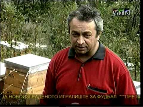 apikultura - {ENG}--- Preservation of bee colonies of local bee specie Mariovska bee and establish reproduction centre for Mariovska bee; Starting production of organi...