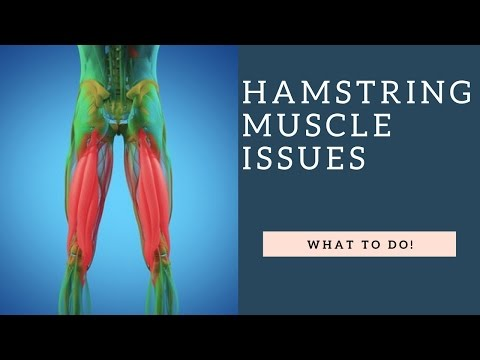 STOP Hamstring Stretches & Strengthen These Muscles Instead To Reduce Hamstring Pain!