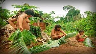 Animal Sapiens (full documentary)