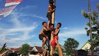 Video Panjat Pinang Anak Anak Paling Lucu Sambut  17 Agustus MP3, 3GP, MP4, WEBM, AVI, FLV Agustus 2018