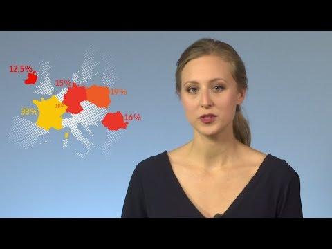 Steuerparadies Europa – Wie Apple und Co. Steuern sparen