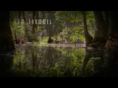 True Blood (Sangre Fresca) : cabecera fanmade - 2nda Temporada