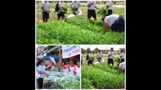 Huai Yot Thailand  City new picture : Huai Yot Story