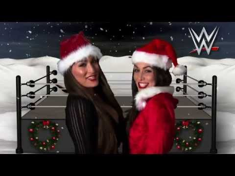 holidays - From all the WWE Superstars and Divas, we're wishing the WWE Universe a happy and safe holiday season full of celebration.