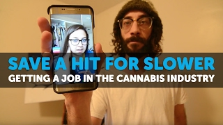 Getting a Job in the Cannabis Industry - SAVE A HIT FOR SLOWER ep 11 by 420 Science Club