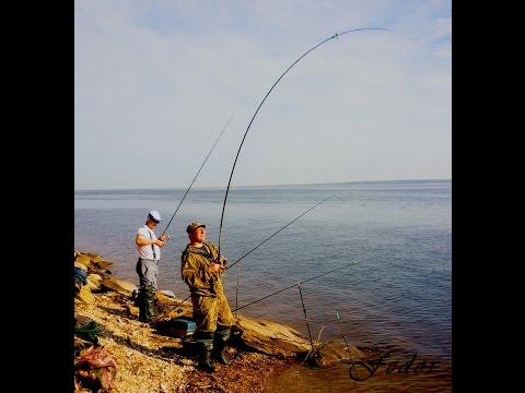 ловля на фидер в чебоксарах