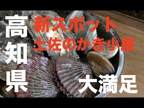 高知県須崎のゆるキャラの帰りに土佐のかき小屋で贅沢してみた