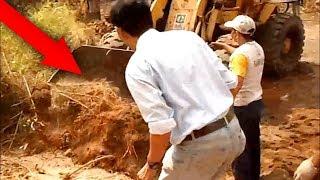 Download Video Sedang Gali Tanah, Para Pekerja Kaget!! Tiba-tiba Muncul Sosok Makhluk Buas ini!! MP3 3GP MP4