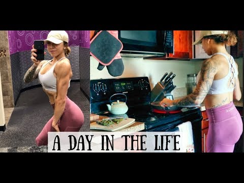 Planet Fitness Fat Burn Workout + A Day in the Life Intuitively Eating