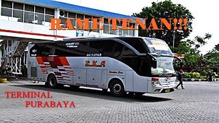 Video Ramenya, Aktifitas Bus di Terminal Tersibuk Se Asia Tenggara, Bungurasih, Surabaya MP3, 3GP, MP4, WEBM, AVI, FLV Mei 2019
