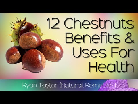 Chestnuts: Benefits and Uses