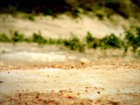 Дети жуки (2011) смотреть мультфильм онлайн бесплатно