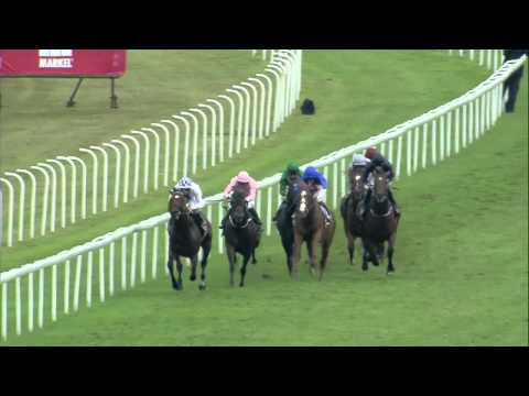stakes - Another Hughes, Hannon combo with a win for Toronado this time in the 2013 Qipco Sussex Stakes on day two of Glorious Goodwood.