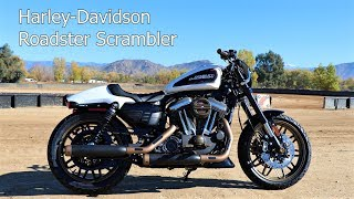10. Harley Roadster Converted into a Scrambler/Street Tracker