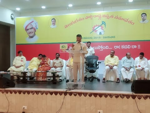 TDP Statewide level Conference in Vijayawada