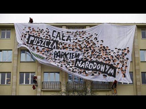 Πολωνία: Ακτιβιστές υπερασπίζονται «παρθένο» δάσος