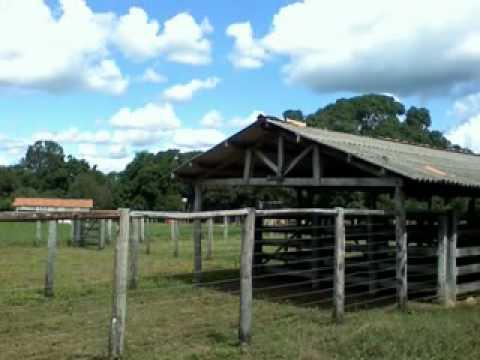 Fazenda Santo Antonio Tocantins