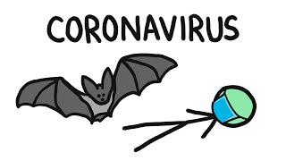 Why Do Bats Carry So Many Diseases? (like Coronavirus)