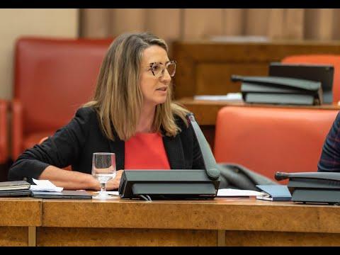 Intervención de Alicia García en el Congreso de los Diputados