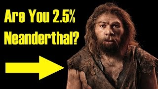 Are you related to Neanderthals or other human species? The chances are pretty high if you live outside of Africa, but if you're curious why then this video ...