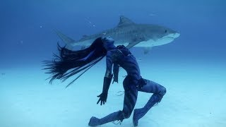 """Video Tears of a Mermaid - On Location: """"Tigress"""" Tiger Shark Shoot, The Bahamas MP3, 3GP, MP4, WEBM, AVI, FLV Juni 2018"""