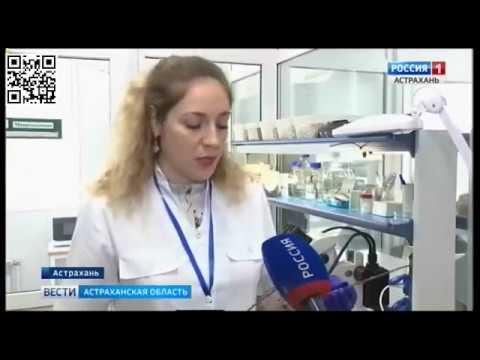 Специалисты Управления Россельхознадзора проверяют качество посадочного материала в Астраханской области