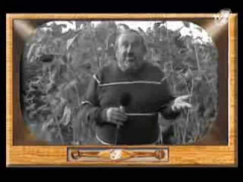 Tadeusz Drozda - Dyżurny Satyryk Kraju 6