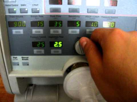 1010 ventilador de alta frecuencia para adultos