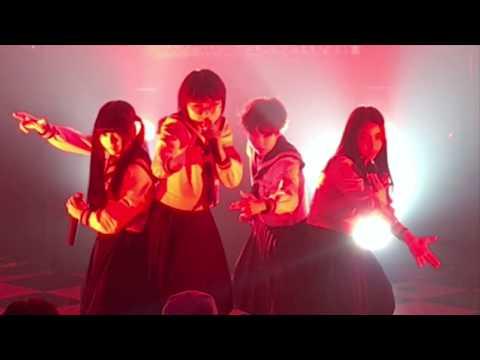 , title : '新しい学校のリーダーズ LIVE 2019.12.7 @渋谷CYCLONE 「令和元年度第九回はみ出しフェスティボー」'