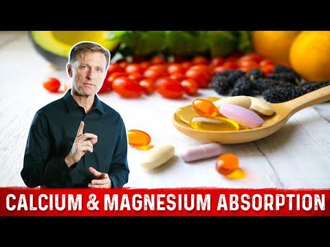 Calcium & Magnesium Absorption Basics (видео)