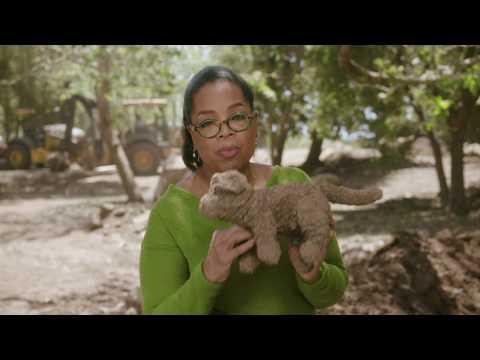 Katy Perry x Oprah Winfrey - WITNESS: Coming Home - Thời lượng: 7 phút, 40 giây.