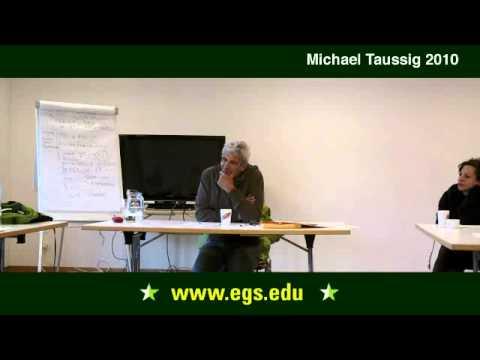 Michael Taussig. Was ist ein Essay? Opfer und Verantwortung. 2010