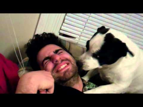 Armen is eaten alive by a dog