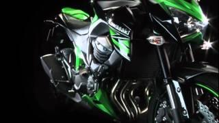 8. 2013 NEW Kawasaki Z800: Spec & Design