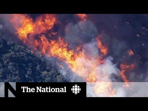 Wildfire burns through California's Thousand Oaks