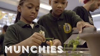 MUNCHIES Presents: Edible Schoolyard NYC by Munchies