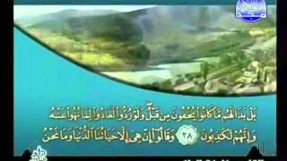 HD المصحف المرتل 07 للشيخ خليفة الطنيجي حفظه الله