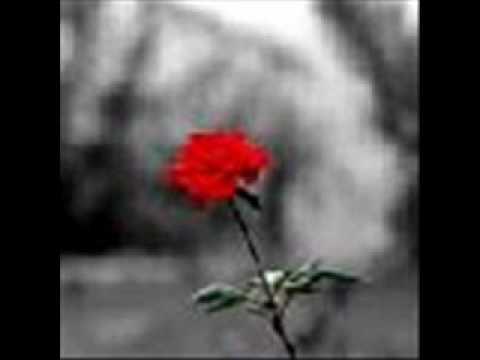 Tekst piosenki Evanescence - Goodnight po polsku