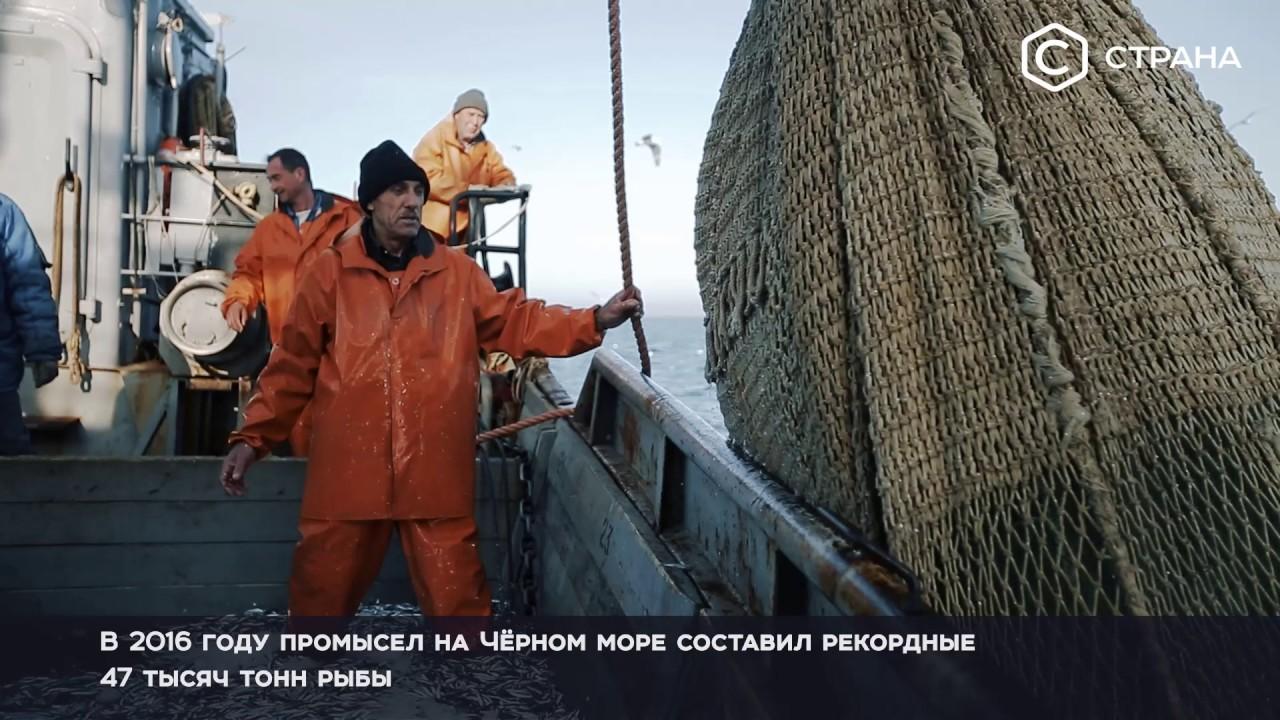 Тв морской онлайн прямой эфир