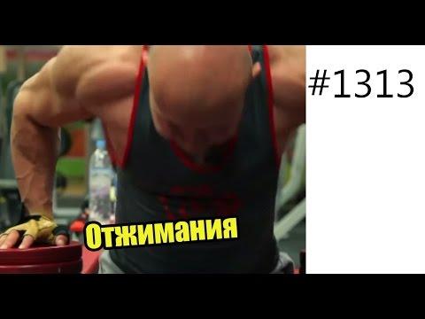 Как накачать трехглавую мышцу бедра