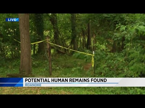 Roanoke Police: Human remains potentially concealed outdoors in Northeast