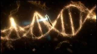 Serie Cosmos 2014 Capitulo 2  Descarga Castellano