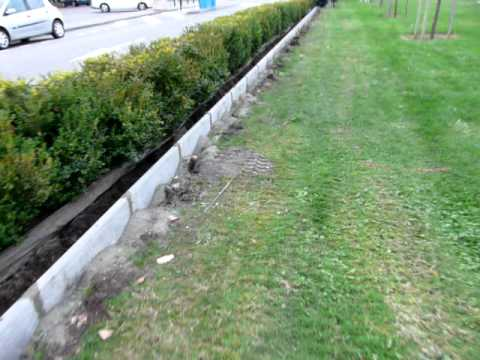 Comment poser des bordures de jardin en beton la r ponse for Bordure de jardin beton