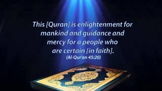Chapter 80/114: Surah Abasa by Mishary Rashid Al-Afasy (English audio translation)