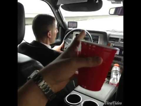 Will Sasso Arnold Schwarzenegger Driving Vines