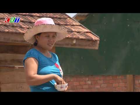 Phóng sự đồng bào các dân tộc thiểu số chung tay xây dựng quê hương Cư Jút giàu đẹp