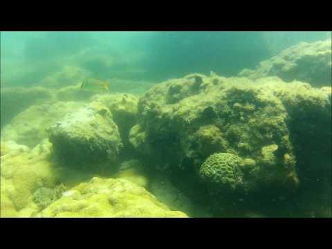 Filmagem Noivado surpresa de  Felipe e Daiana - Fundo do mar