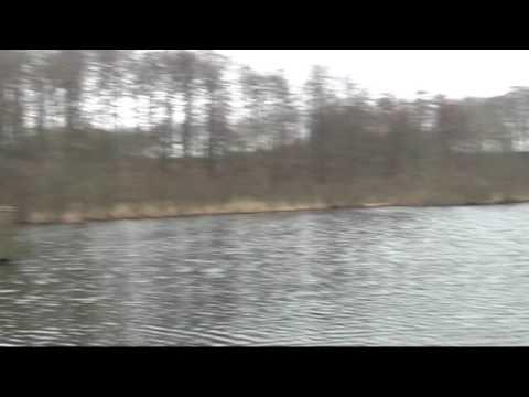 Pescuit la stiuca cu Savage Gear