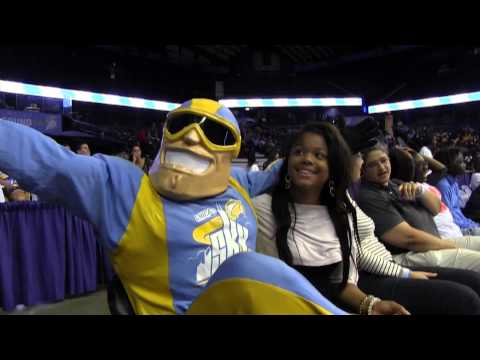 Chicago Sky 2013 Fan Appreciation
