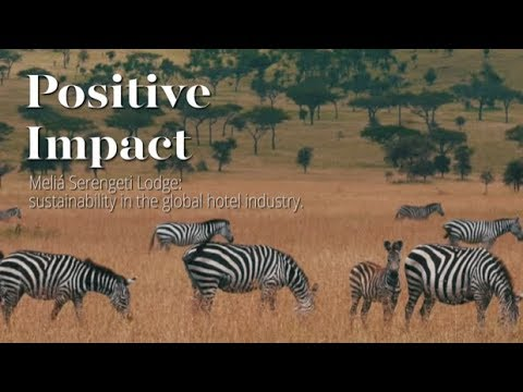 Meliá Serengeti Lodge: sustainability in the global hotel industry